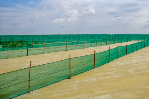 Knittex South Africa - Windbreak Nets